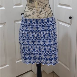👑 Loft Embroidered Shift Skirt with lining